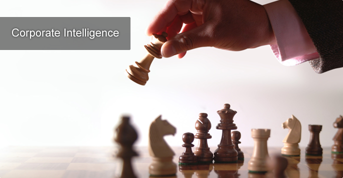 Corporate Intelligence services in Delhi